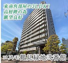 コスモ鶴見緑地弐番館<br>